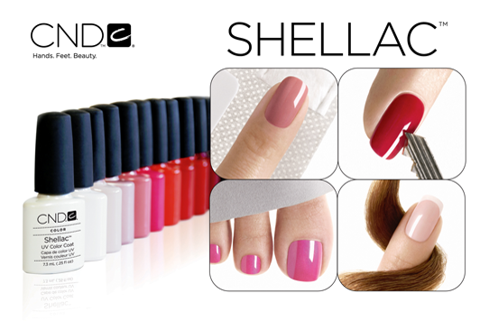 Launching our Shellac Training course!